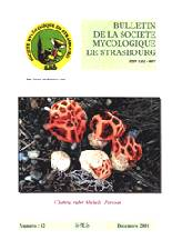 Couverture: Clathrus ruber Micheli:Persoon